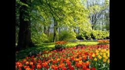 تفسير حلم جمع الثمار من البستان في المنام