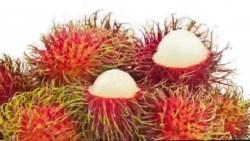 تفسير أكل الفواكه في المنام