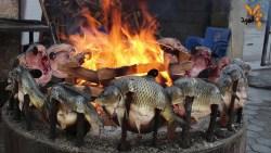 تفسير حلم صيد الأسماك الميتة