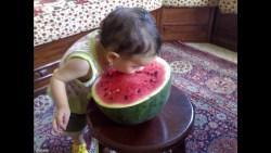 تفسير رؤية زراعة البطيخ في المنام