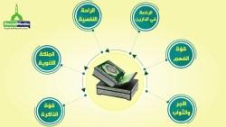طرق لتسهيل حفظ القرآن للاطفال