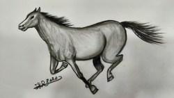 تفسير حلم الحصان الأبيض الهائج في المنام