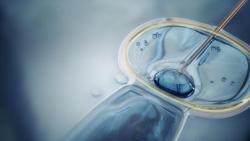 نصائح قبل الحقن المجهري بشهر