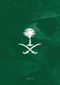 كلمات عن قوة السعودية