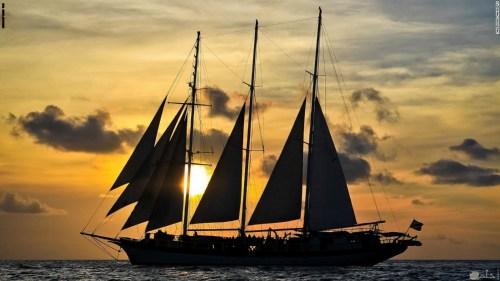 تفسير حلم قيادة قارب أو سفينة