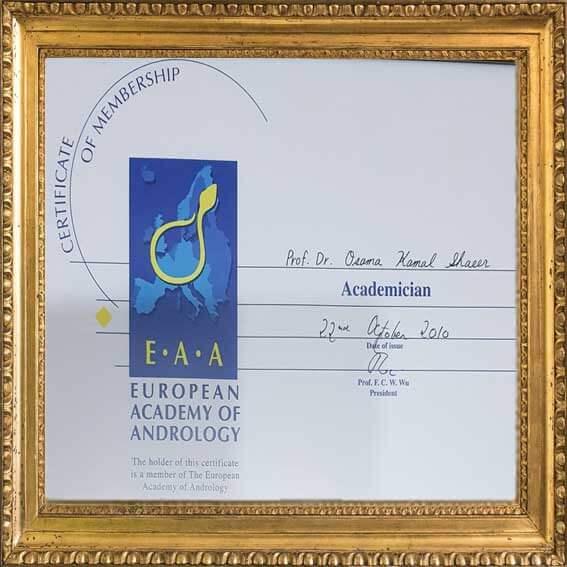الأستاذية من الأكاديمية الأوروبية للذكورة