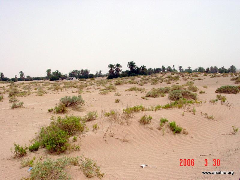 yabrin-mar06-008