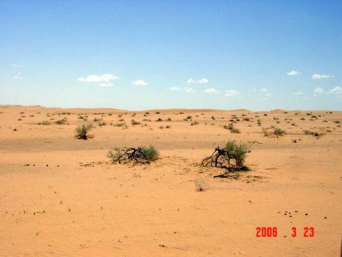 saha-hasat-mar06-020.jpg