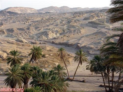 وادي مقنا