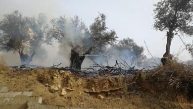 Photo of حريق في بلدة السكسكية (حي السدر).