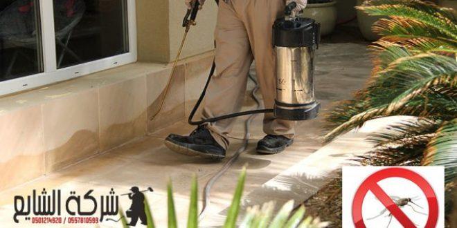 مكافحة البعوض المنزلي 0501214920 افضل شركات رش مبيدات حشرية بالرياض بالدمام