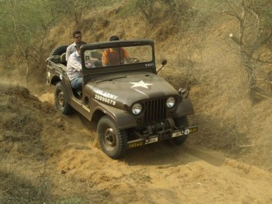 Ranthambore Jungle Safari
