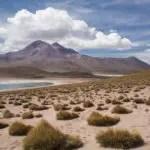 San Pedro de Atacama: Die Lagunas Altiplánicas – ein Ausflug in eine andere Welt