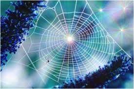 Kisah Sarang Laba-laba Di Pintu Gua