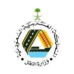 وزارة النقل تستحدث أقساما نسائية في مختلف المناطق