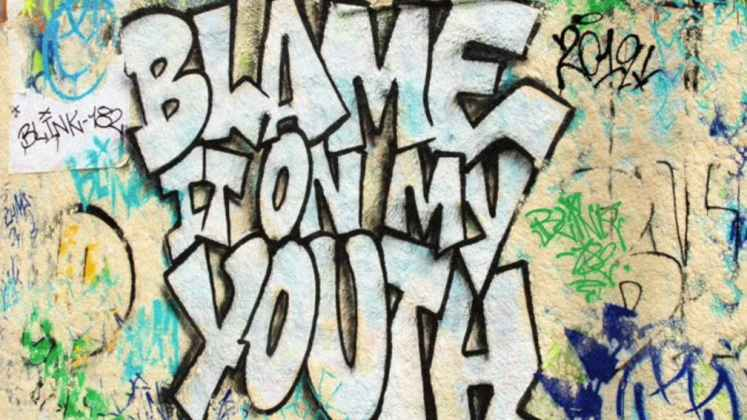 blink 182 Blame It On My Youth single