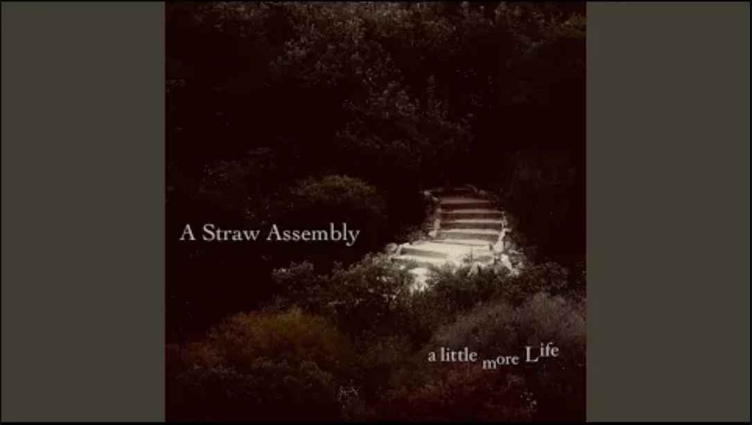 A Straw Assembly - I Crawled In Through A Buttonhole review alt77