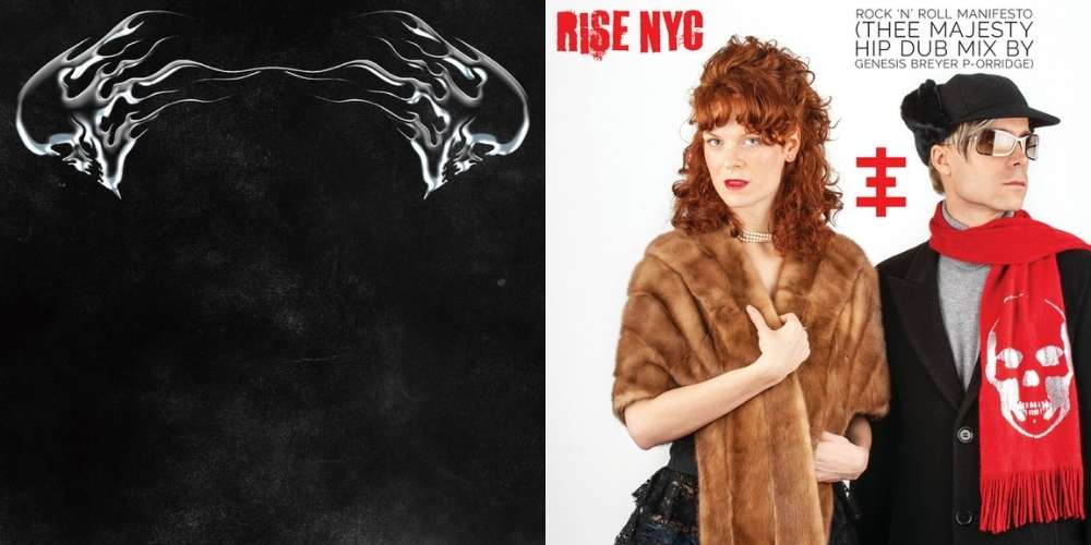 Rise NYC and Data Animal reviewed by Alt77