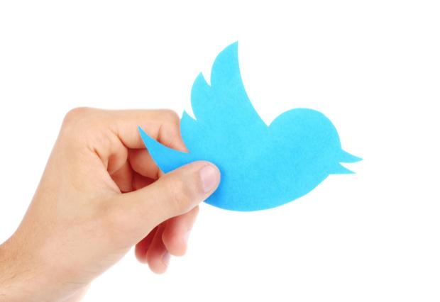 Twitter elimina cuentas falsas en China, Egipto, Ecuador y España