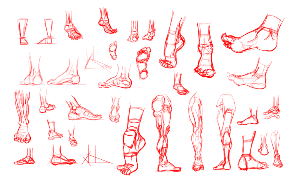 30_day_art_hell___day_04___anatomy_study___feet_by_jodeonslow-d6cesi4