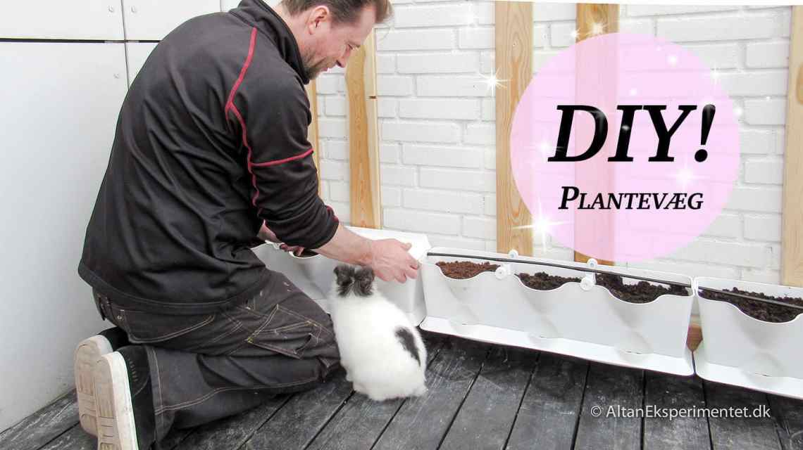 Minigarden plantevæg DIY - Sådan bygger du selv en plantevæg fra Minigarden
