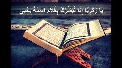 صورة لمحات جمالية في آيات القرآن (1)