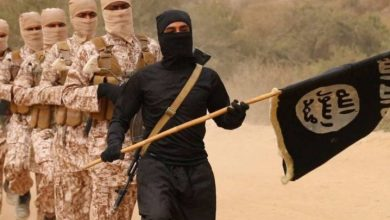 Photo of «آيات الجهاد» في خطاب «جماعات الإرهاب» (4)