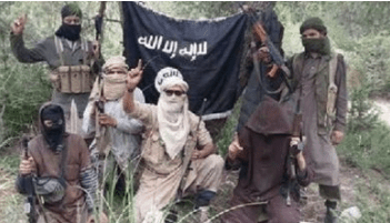 Photo of «البيعة».. أداة المتطرفين لقتل المسلمين