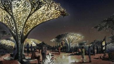 Photo of بالفيديو.. كهف المعجزات في الحديقة القرآنية