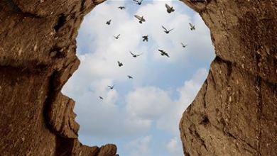 الضمير الإنساني الحصن المنيع لمواجهة السلوكيات الخاطئة