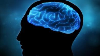 الآدميين-نعمة العقل