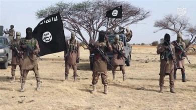 الخطر المتنامي للإرهاب