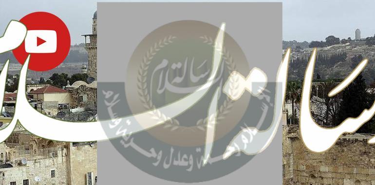 الجهود العربية والدولية