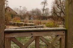 Staudenwiese Winter