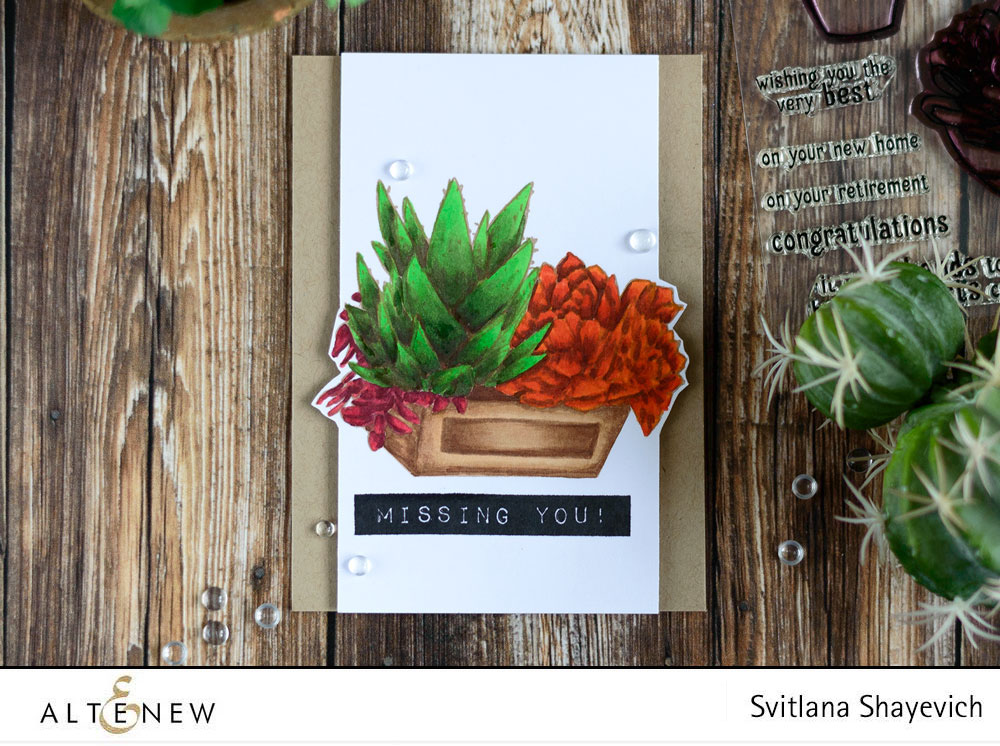 Altenew Succulents in Crate. Card by @craftwalks