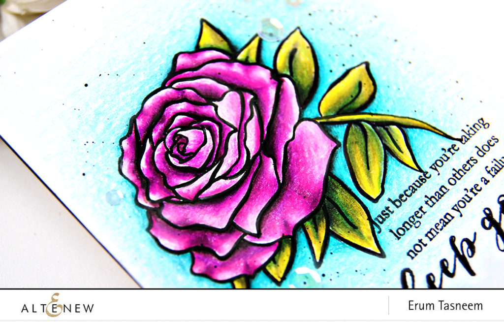 Altenew Penned Rose Stamp Set | Pencil Colored | Erum Tasneem | @pr0digy0