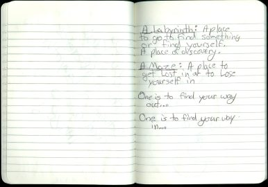 Journal 11 Page 17
