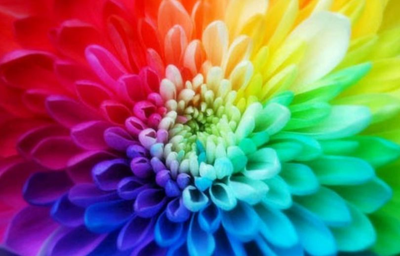 How Colors Help you Manifest your Desires