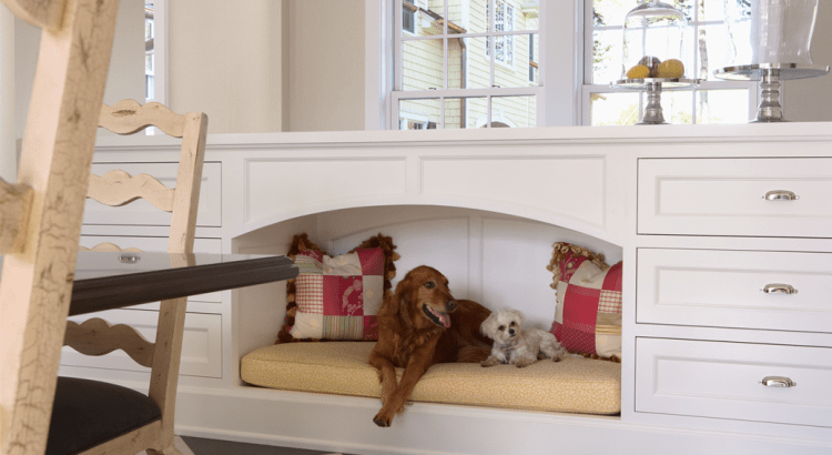 Crazy Home Modifications For Devoted Pet Owners