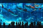 10 Largest Aquariums in the World