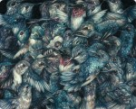 Detailed Colored Pencil Drawings of Flora and Fauna by Marco Mazzoni