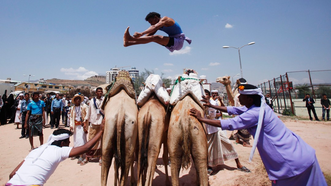 A Bedouin man jumps over camels during the Sanaa Summer Festival in Sanaa