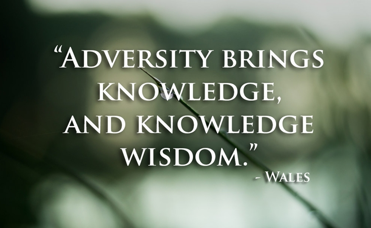 21 Beautiful And Inspirational Proverbs From Around The World - Wisdom - Wales