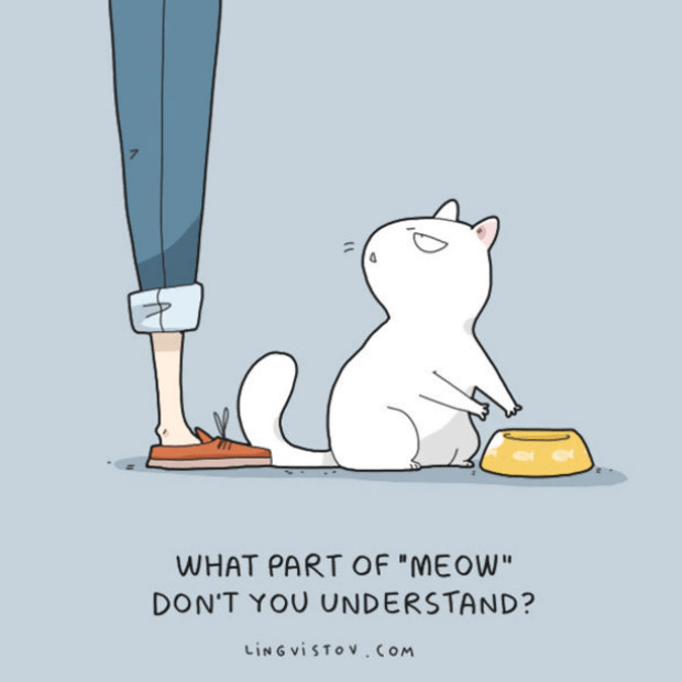 Brilliant-Animal-Comics-14