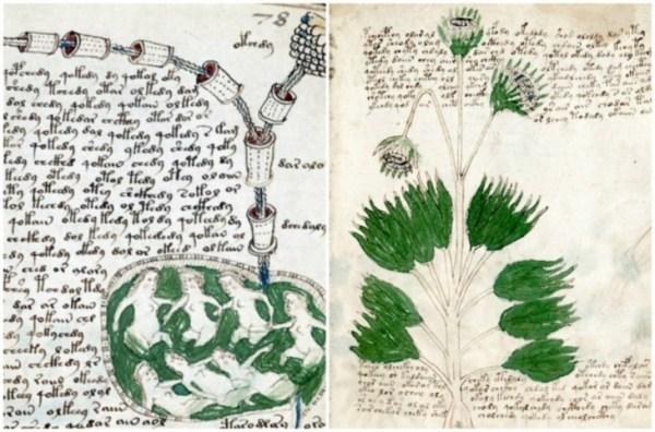 Unexplained Historical Objects - The Voynich Manuscript 1