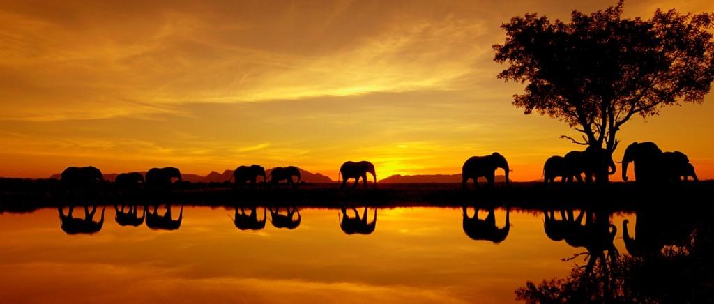 19 Beautiful Sunsets