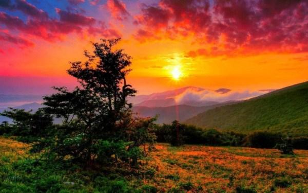 beautiful sunsets 3