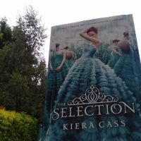 #day43 of #abookaday -- Question:What's your favourite book cover? #kieracass #theSelection #yabooks