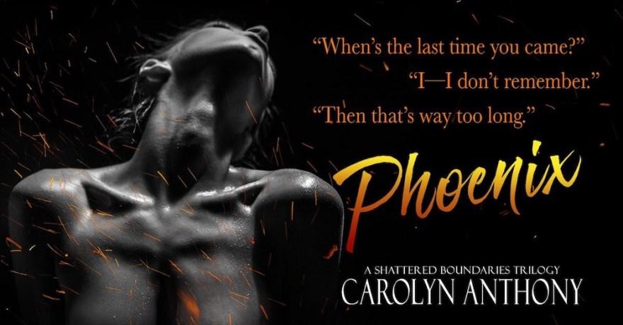 Phoenix-Teaser 5