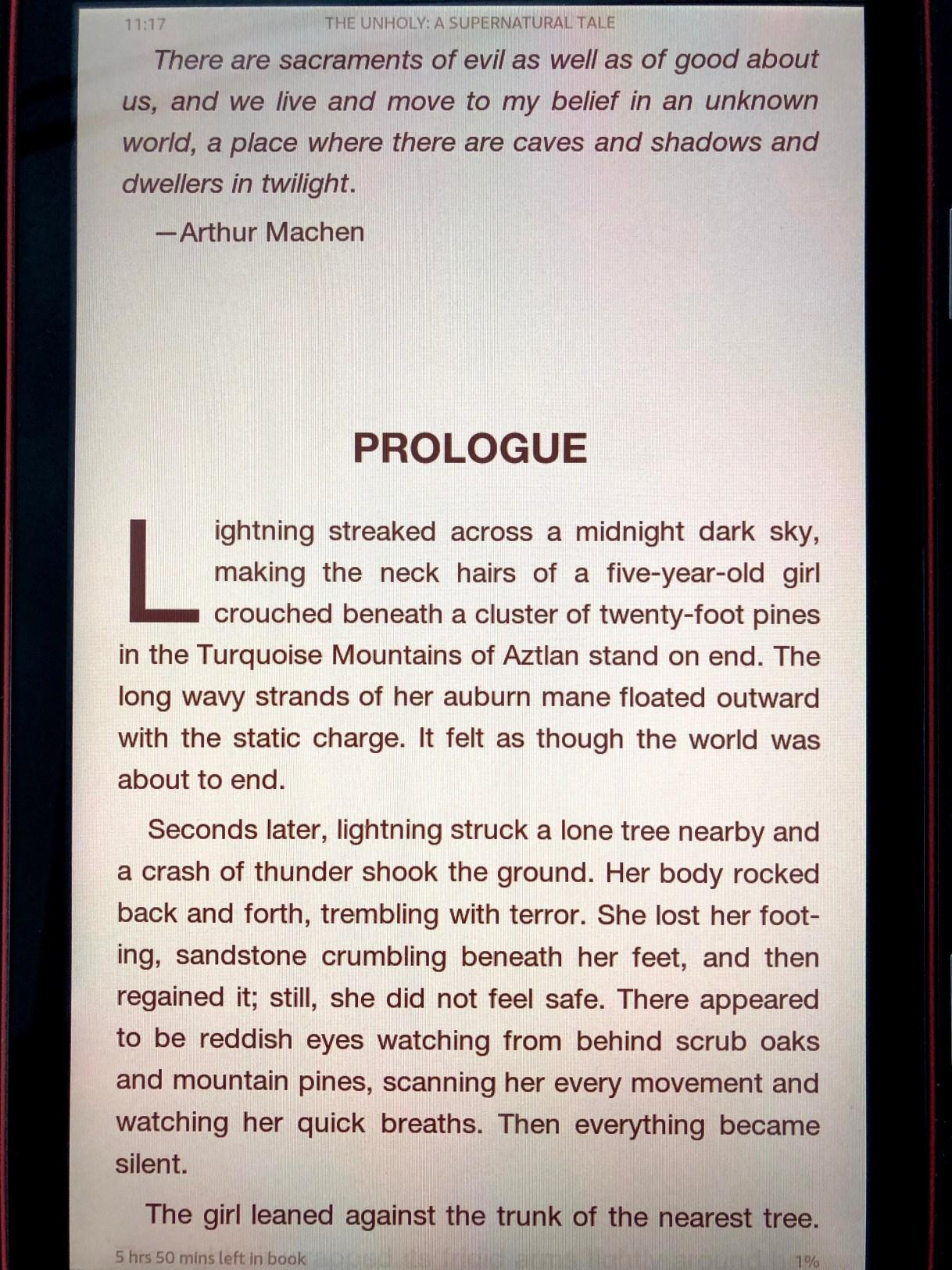 #Friday56 #bookbeginnings The Unholy - A Supernatural Tale OF HORROR by Paul DeBlassie III